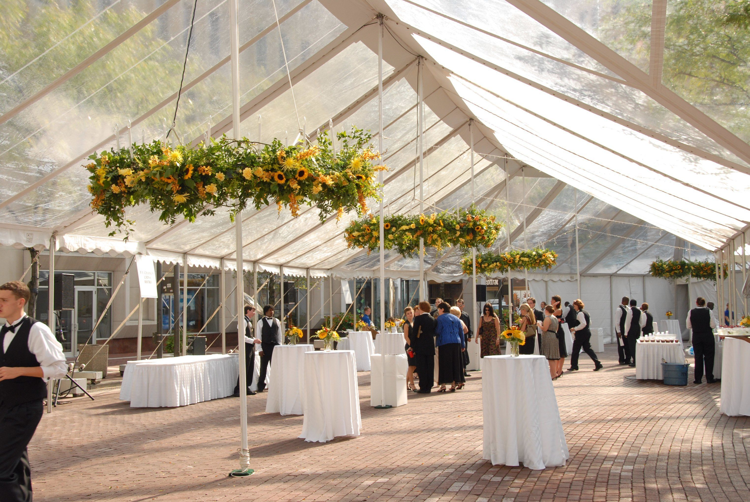 Backyard Tent Wedding Reception Ideas : Indianapolis Wedding Tent Rental Tips  A Classic Party Rental