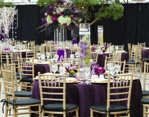 Wedding Rental Chairs And Chair Covers